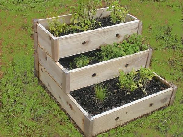 Container Herb Garden Design DBdw